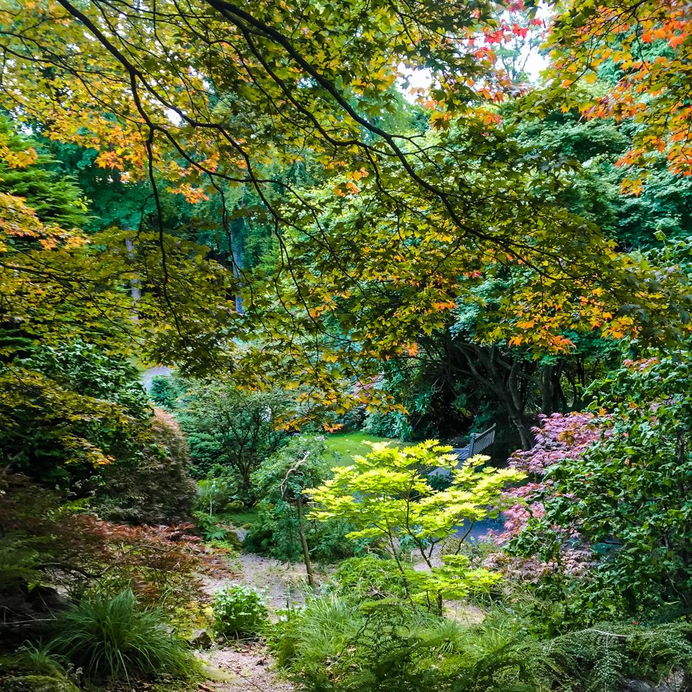 johnston-garden-3